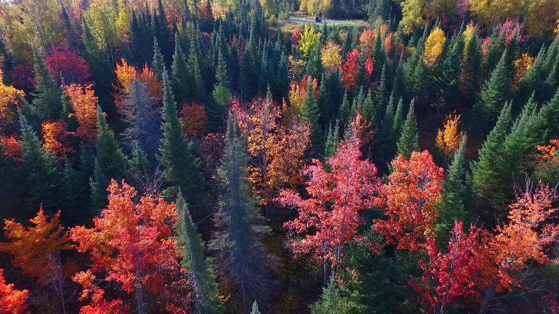 IRTB FALL DRONE PREVIEW.mov.01_00_28_03.Still001
